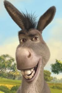 donkey-shrek-iphone-4-wallpaper-320x480